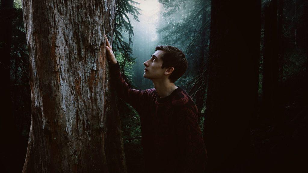 Drewno ksieżycowe