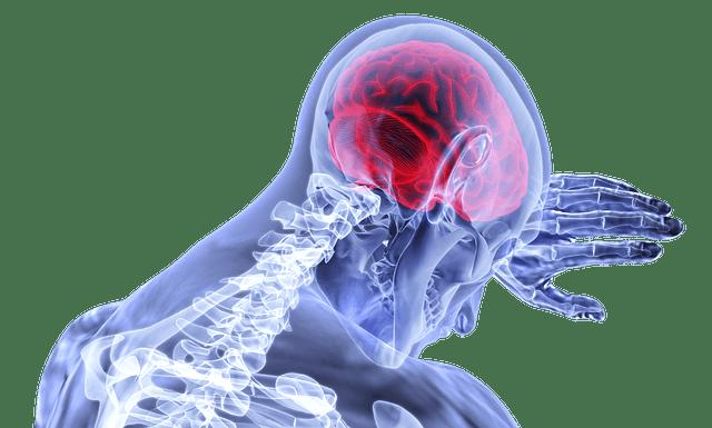 Co to jest Nowa Medycyna Germańska ?