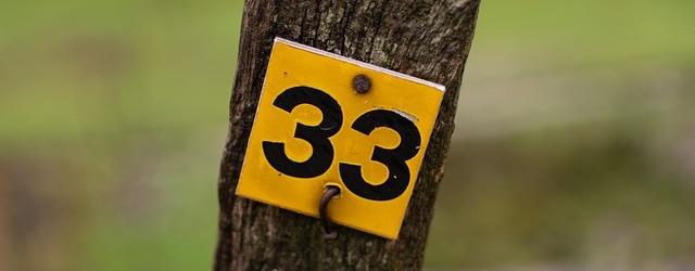 Mistrzowska 33