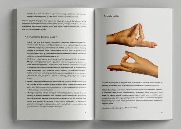 Mudry PDF baner