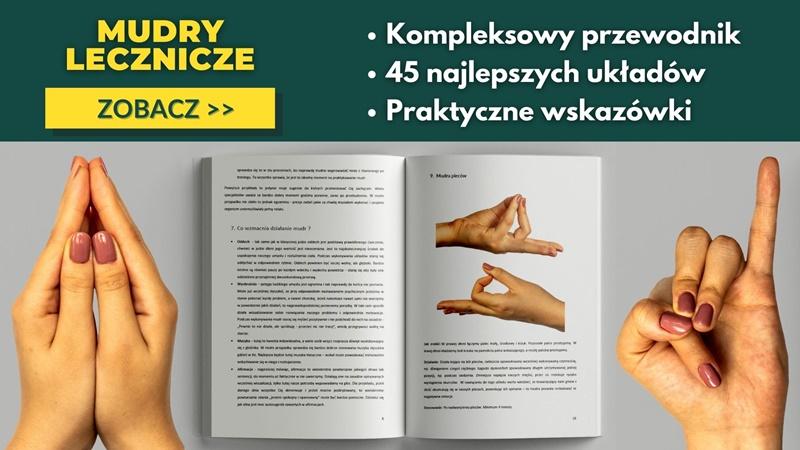 Wszystkie mudry lecznicze PDF - baner